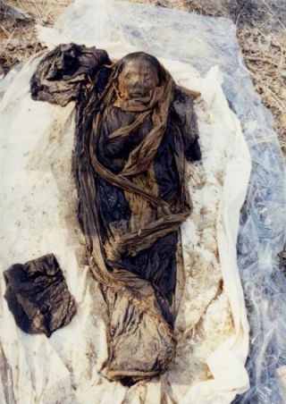 korean mummy child had hepatitis b