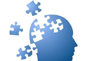 brain-puzzle-101008-02