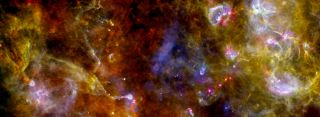 Cygnus Star Region