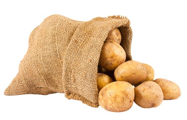 Hot topic: Organic food