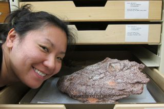Sandy Kawano creates 3-D fossil models