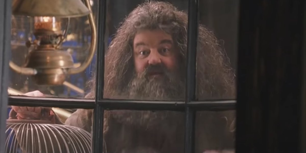 Robbie Coltrane in Harry Potter And The Sorcerer's Stone