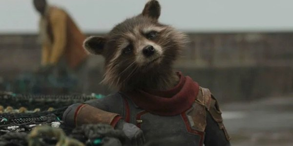 Rocket in Endgame