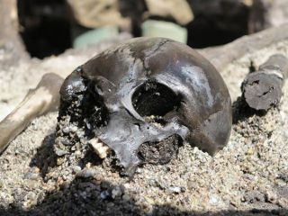 This skull, uncovered among the remains of many other warriors at Alken Enge in Denmark, has a mortal wound in the back of the cranium.