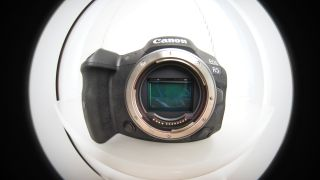 Fishy business! A Canon RF 8-15mm f/4 Fisheye has been designed for EOS R cameras
