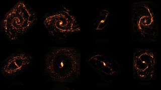 Here, a few of the stellar nurseries mapped in the ALMA survey.