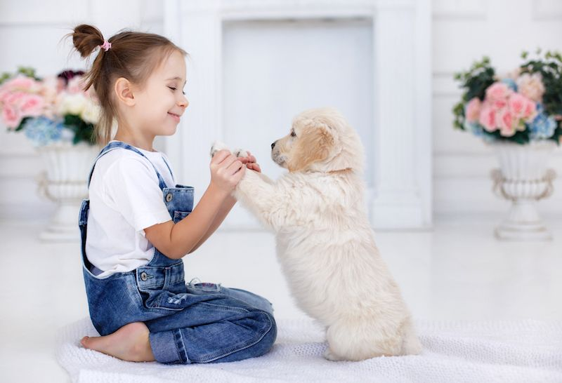 Child's Best Friend: Kids Prefer Their Pets Over Siblings