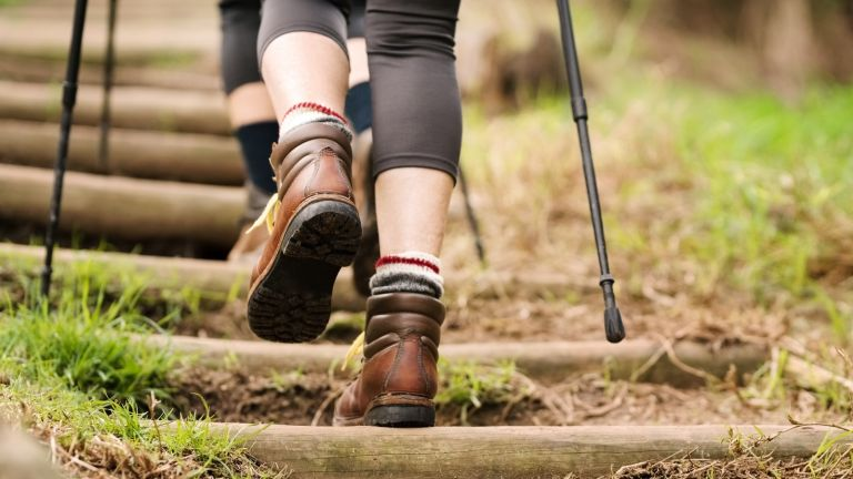 Nordic Walking feet and poles