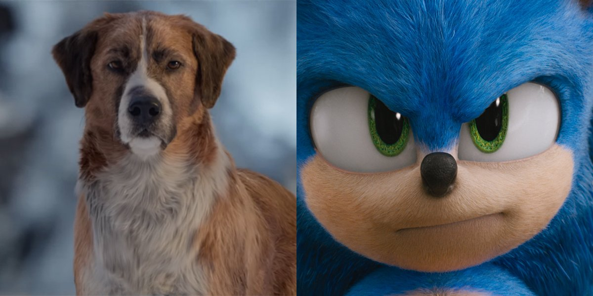 Surprise, Sonic Is In A Tight Race With Call Of The Wild For Box Office Pack Leader