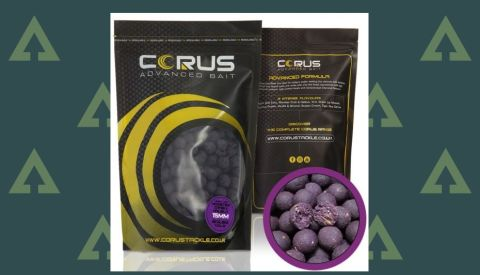 Corus Advanced Bait Boilies