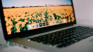 best alternatives to illustrator - MacBook screen displaying Adobe logos