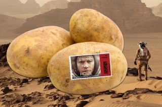 "'The Martian"" Stamped Potato"