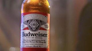 Bottle of Budweiser beer.