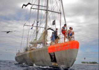 tara oceans, ocean voyages, ocean research, ocean research news, ocean microorganisms