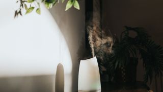 Air purifier vs essential oil diffuser: Image shows oil diffuser mist