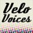 Profile image for VeloVoices