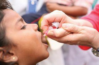 trivalent oral polio vaccine